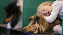 Narkolepsie tritt in seltenen Fällen bereits im Kindesalter auf.