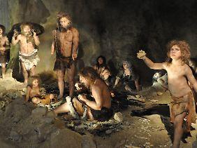 Erkenntnisse aus der Steinzeit bereiten uns heute mitunter Probleme.