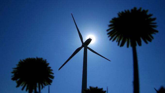 """Nicht alles, was sich """"Ökostrom"""" nennt, ist durch und durch grün. Im ZWeifel helfen Siegel weiter."""
