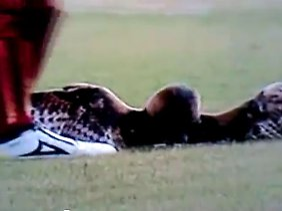 Der Moment vor dem Tritt: Morenos Tat wurde auf Video festgehalten.
