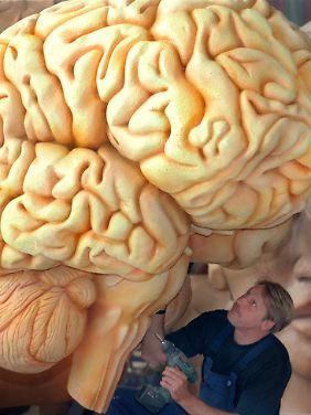 Manipulation am menschlichen Gehirn: Wie fair ist Hirndoping? Und wie freiwillig?