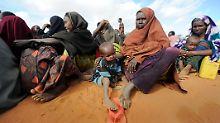 Die tödliche Schlafkrankheit kommt in 36 afrikanischen Ländern vor.