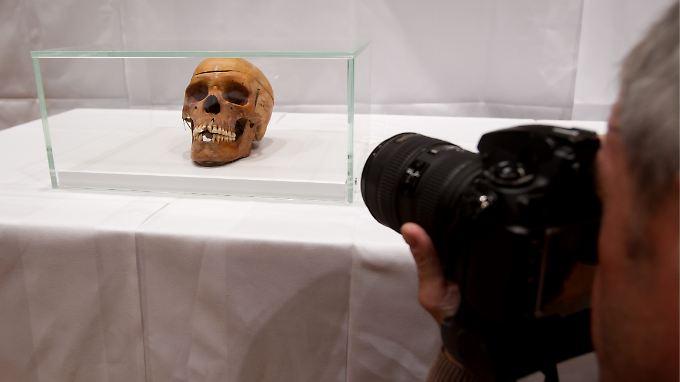 Jahrzehntelang blieben die Schädel in der Charité unbeachtet.