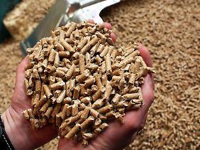 Die Nachfrage nach Brennholz steigt.