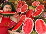 Nur makellose Früchte werden zum Verkauf angeboten.