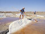 In den Salinen an der Algarve haben schon die Römer Salz gewonnen.
