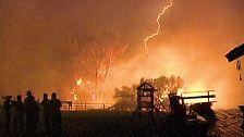 Blitze und Brandstifter: Waldbrände weltweit