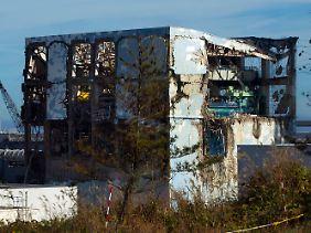 Die Atomkatastrophe verursachte schwere Schäden an den Reaktorgebäuden.