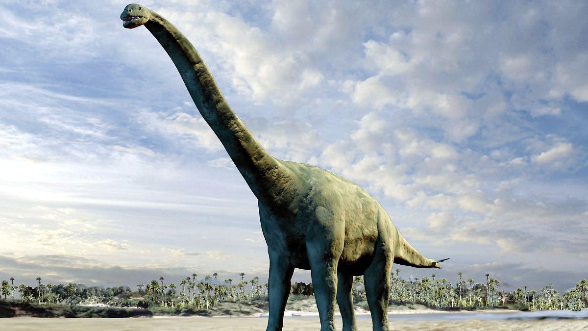 Große Dinosaurier hatten Teen Sex