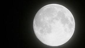 Gute Nachricht des Tages: Mondgestein in Australien gefunden