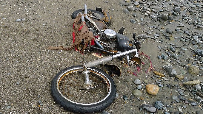 Der Strandgutsammler Peter Mark fand das gute Stück auf den Haida-Gwaii-Inseln vor der Küste der Provinz British Columbia.