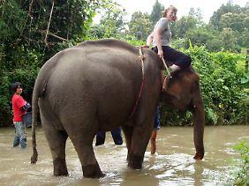 """Bianca Horna aus Bad Homburg während eines Elefantenreitkurses auf der schwangeren Elefantendame """"Mae Geo 3""""."""