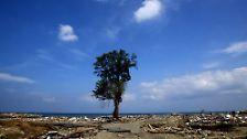 Damals und heute: Zehn Jahre nach dem Tsunami