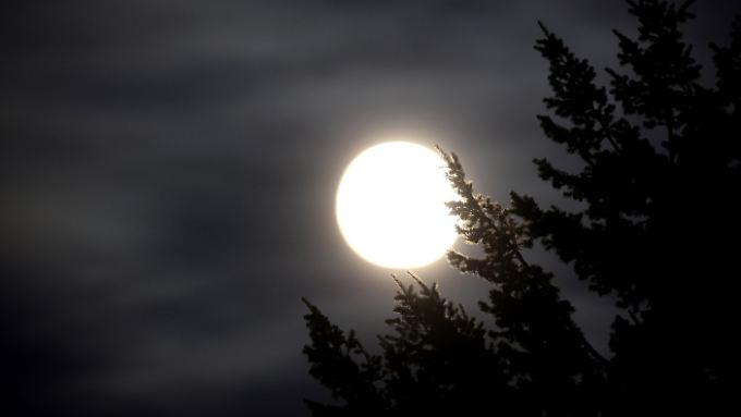 Zunächst umkreiste der Mond die Erde in einem Abstand von nur 60.000 Kilometern. Die Gezeitenkräfte müssen entsprechend groß gewesen sein.