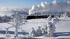 Frost verändert das Leben: Winter-Impressionen