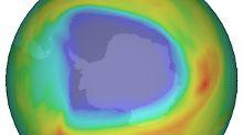 Das Ozonloch über dem Südpol - im Oktober 2008 gemessen von einem Absorptionsspektrometer.