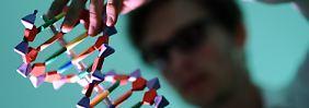 Ein DNA-Modell.