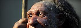 Rechtshänder und sprachfähig wie der Homo sapiens: Der Neandertaler.