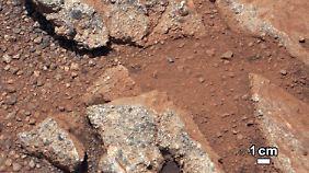 "Wasser auf dem Mars?: ""Curiosity"" fotografiert Fluss-Kiesel"