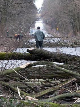 In ganz Hassen sorgte der Sturm für Schäden.