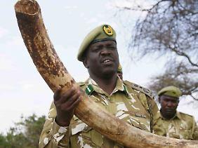 CITES ist bisher das einzige Werkzeug ist, mit dem sich internationale Abkommen zur Handelskontrolle von Wildarten erzielen lassen.