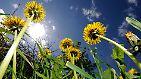 Unendlich umweltfreundlich: Grüne Energie