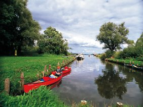 Fast unberührte Natur - im Müritz-Nationalpark lassen sich Fischadler, Biber und Rohrdommel vom Kanu aus beobachten.