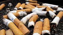 Tabak hilft Vögeln: Nikotin schreckt Parasiten ab