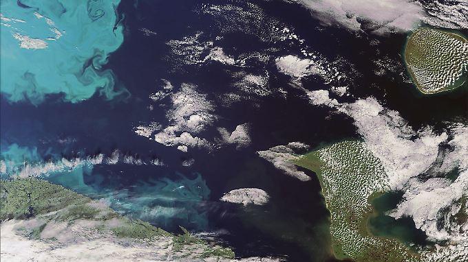Luftbild der Nordostpassage in der Barentsee.