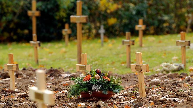 2011 starben 6440 Menschen weniger als 2010.