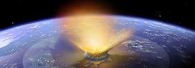 Asteroid-Einschlag vor 65 Mio. Jahren: Fast alle Reptilienarten vernichtet