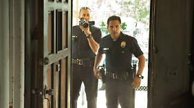 Wir beobachten die Cops bei der Arbeit ...