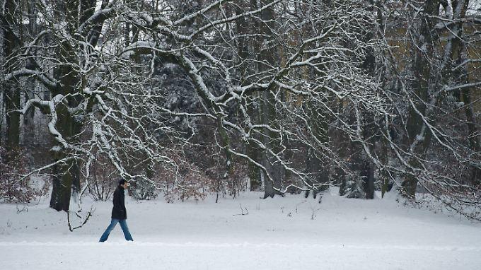 In Regensburg liegt Schnee - noch.