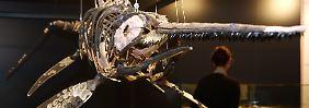 Ökosystem der Urzeit: Fischsaurier beherrschte Meere
