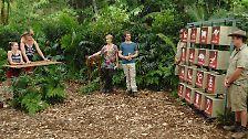 Georgina und Olivia beim Dschungelquiz.