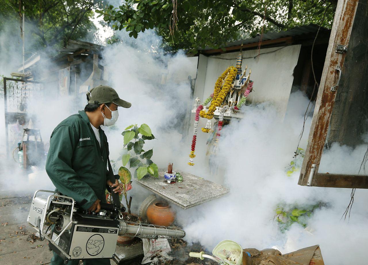 l ngst nicht mehr nur arme leute krankheit dengue fieber kommt zu uns n. Black Bedroom Furniture Sets. Home Design Ideas