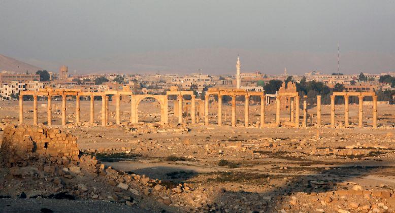 Eine der schönsten antiken Ruinenstädte der Welt ist akut bedroht: das syrische Palmyra.
