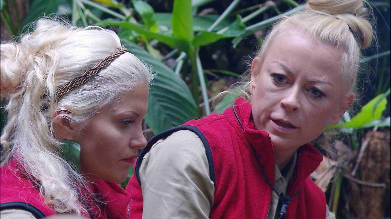 """Am Tag 2 im australischen Dschungel entdeckt Sophia ihre therapeutischen Fähigkeiten. Das Problem: Jennys einstiger Alkoholkonsum. Denn die Doppel-D-Maus weiß aus """"sicheren Quellen"""", dass sich """"der Freund von Jenny auf dem Hinflug besoffen hat"""". Für eine trockene Alkoholikerin sicher nicht leicht."""