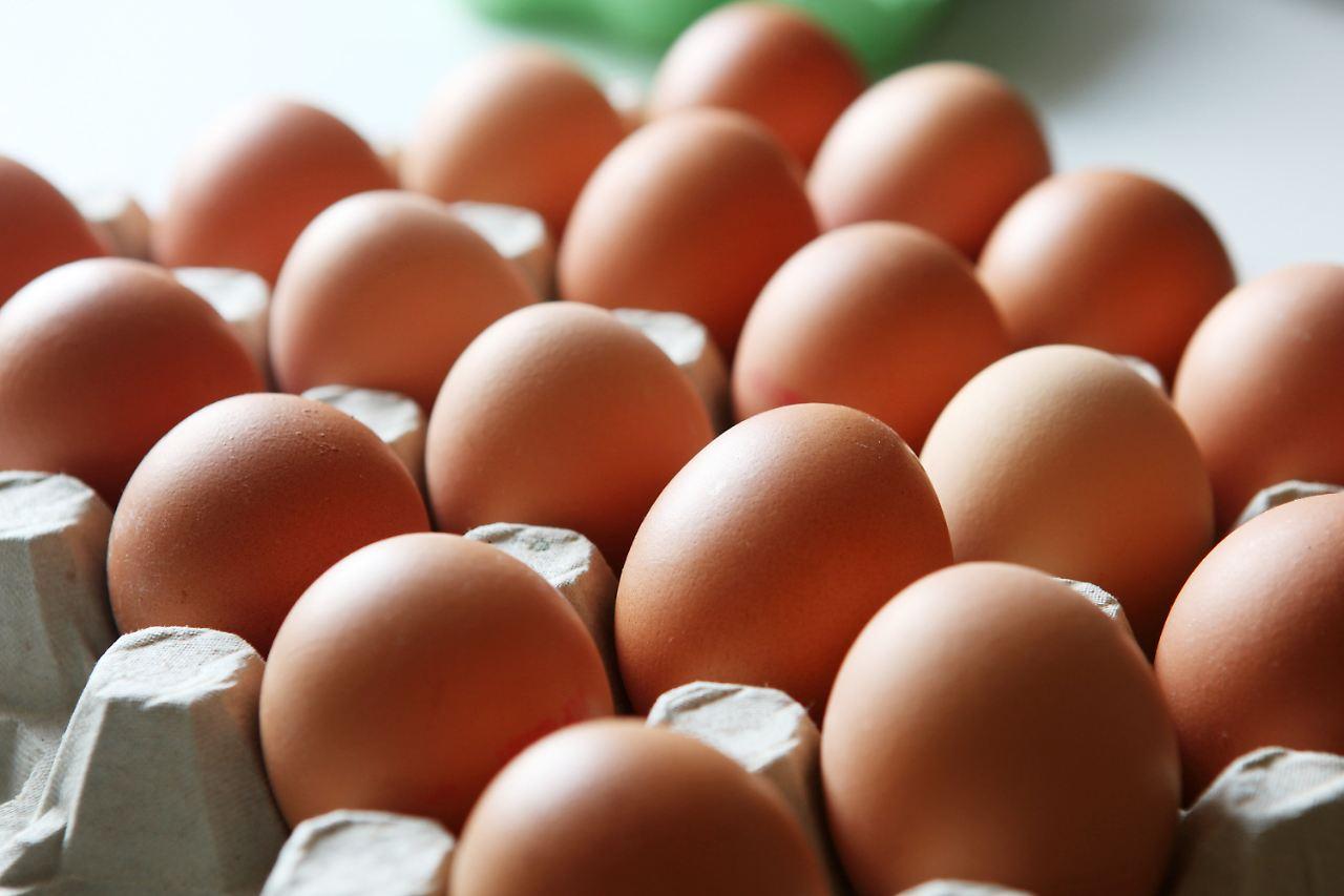 eiwirtschaft boomt tierwohl leidet deutsche essen so viele eier wie nie n. Black Bedroom Furniture Sets. Home Design Ideas
