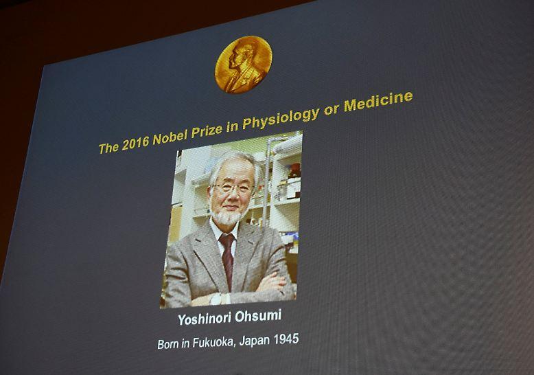 Der Medizin-Nobelpreis ist übrigens mit 8 Millionen Kronen (ca. 830.000 Euro) dotiert. Mit 97 Preisträgern sind die USA Spitzenreiter, gefolgt von Großbritannien (29) und Deutschland mit 16. (lsc)