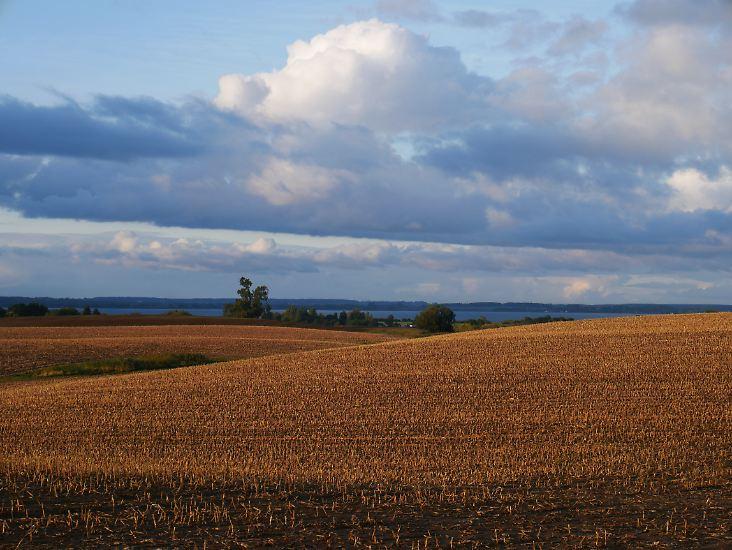 Die Mecklenburgische Seenplatte lockt im Herbst mit einem tollen Farbenspiel.