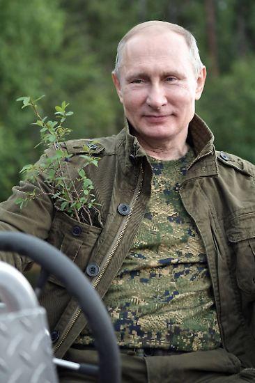 """Putin habe beim Tauchen eine GoPro, eine wasserdichte Videokamera, am Kopf getragen. """"Es gibt einzigartige Bilder von der Jagd auf den Hecht"""", sagt Peskow. Das Material solle in Kürze dem Fernsehen zur Verfügung gestellt werden - ohne Zensur, sagt er. (bdk/dpa)"""