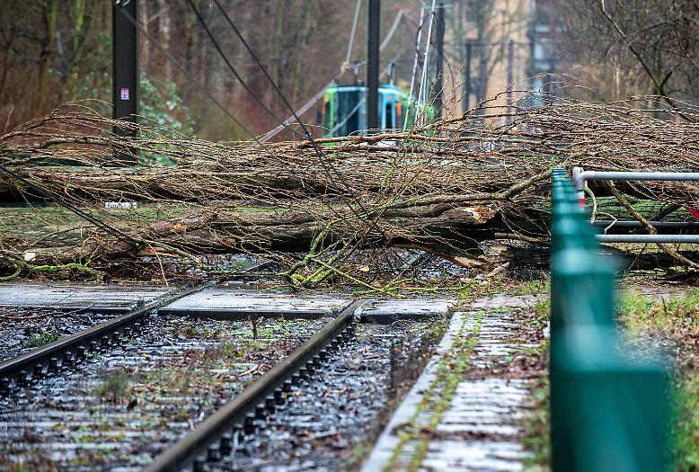 """Orkantief """"Friederike"""" fegt über Deutschland und legt in weiten Teilen des Bundesgebietes den Bahnverkehr lahm, ..."""