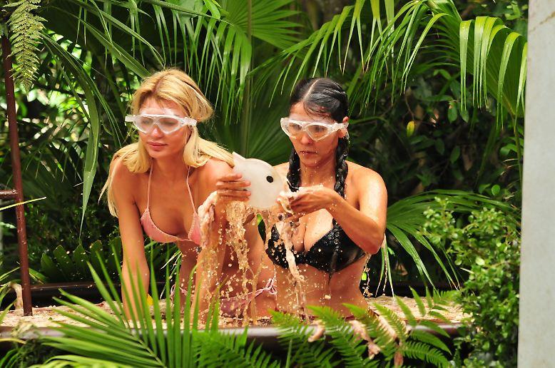 Na, haben Sie schon Dschungelcamp-Entzugserscheinungen? Dann haben wir eine gute Nachricht für Sie: Ihnen ...