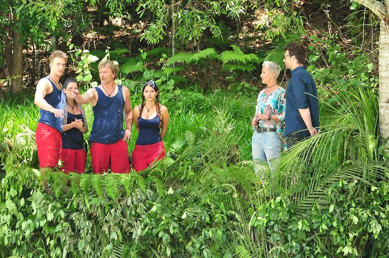 """Tag 8 im Dschungel, das heißt Prüfungsdauergast Matthias Mangiapane hat endlich frei. Stattdessen stürzen sich mit Kattia Vides, Jenny Frankhauser, Ansgar Brinkmann und David Friedrich gleich vier Campbewohner in den """"Creek der Sterne""""."""