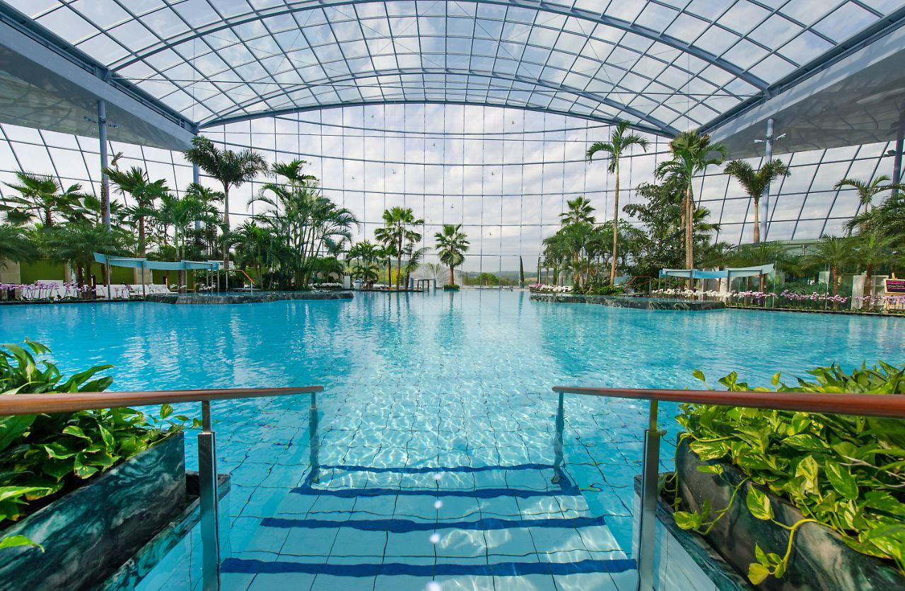 Das Schwimmbad In Sinsheim Bei Mannheim Hat Nach Eigenen Angaben 400 Echte  Palmen Und Die Größte