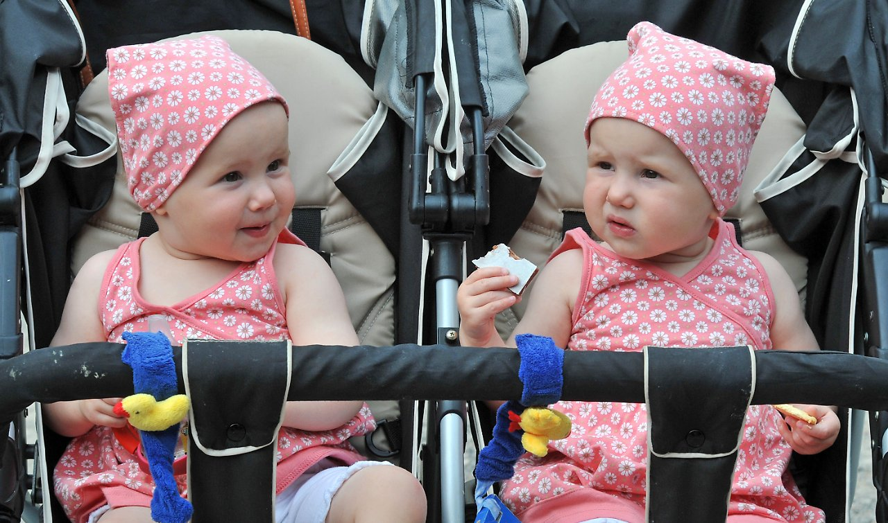 Berühmte Zwillinge