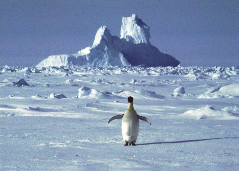 ... Wir wissen, was wir tun müssten, um den Klimawandel zu begrenzen.