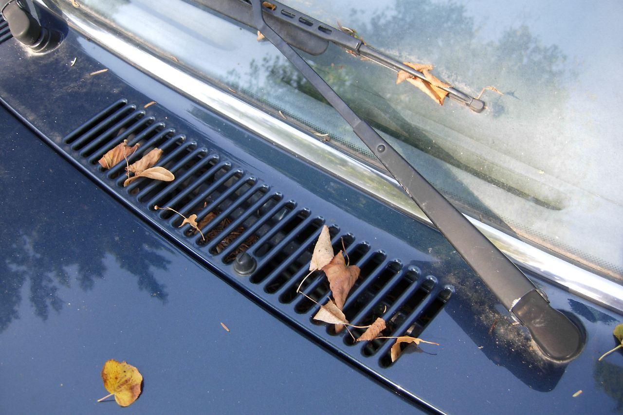 herbstlaub besser gleich entfernen feuchtigkeit setzt autos zu n. Black Bedroom Furniture Sets. Home Design Ideas
