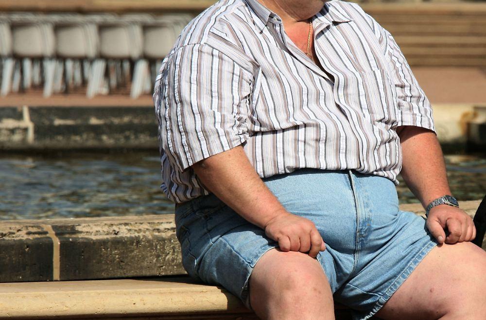 Unbegrenzt Sahnetorte?: Bakterien beeinflussen Gewicht - n
